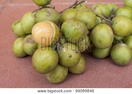 Fresh Melicoccus Bijugatus Spanish Lime Fruit