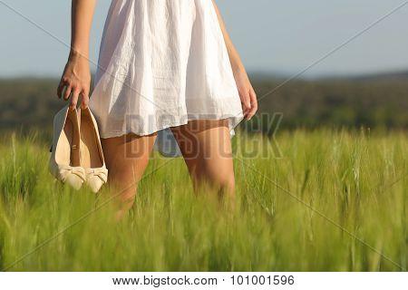 Relaxed Woman Legs Walking In A Field In Summer