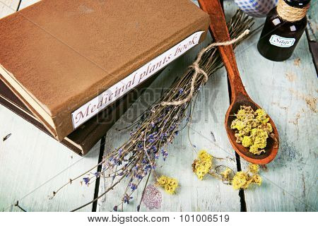 Medicinal plants book with dried herbs on table close up