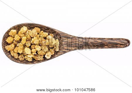 dried white mulberries on a wooden spoon isolated on white - superfruit