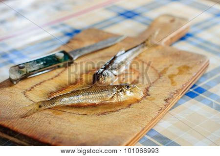 Cleaning And Gutting Little River Fish