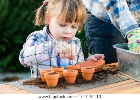 Girl Planting Flower Seeds Into Pots With Her Mother
