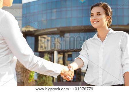 Handshake of two business colleagues