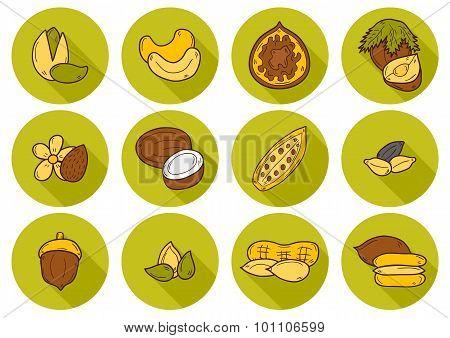 Set of cartoon hand drawn objects on nuts theme: hazelnut, pumpkin and sunflower seeds, peanut, peca