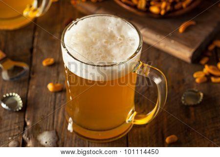 Golden Beer In A Glass Stein