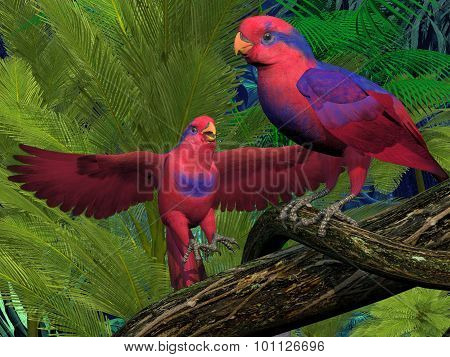 Red And Blue Lory Parrots