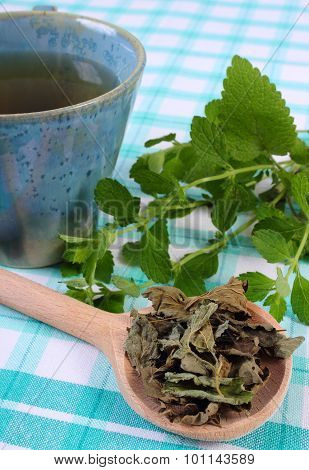 Dried And Fresh Lemon Balm, Cup Of Herbal Beverage On Tablecloth