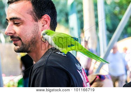 Playing With Parrot