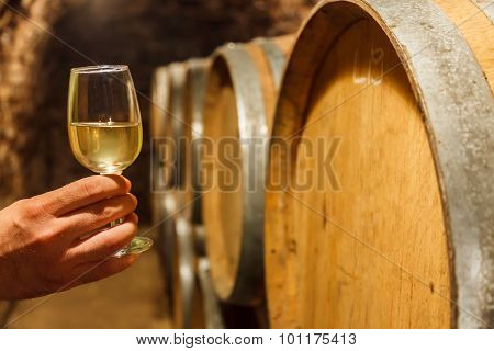 Hand Holding A Glass Of White Wine In Cellar