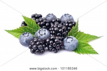 Blueberries And Blackberry