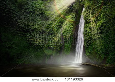 Waterfall in the tropical forest. (Munduk, Bali, Indonesia.)