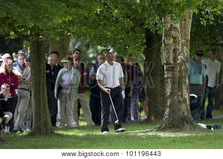 WENTWORTH, ENGLAND. 22 MAY 2009.Thomas Levet (FRA) in the trees playing in the 2nd round of the European Tour BMW PGA Championship.