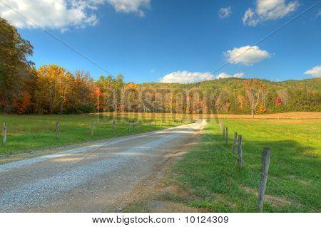 A Peaceful Lane , Fall Colors