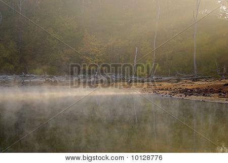 Morning Light on the Lake