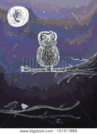 Owl Under The Moonshine
