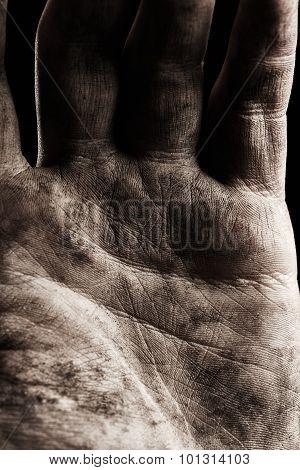 Palm Hand Close Up