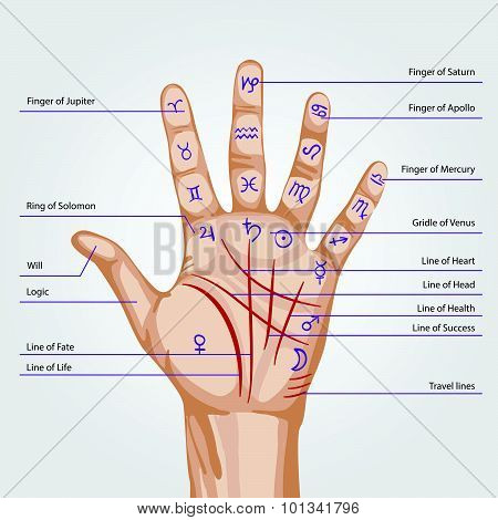 Palmistry Map On Open Palm