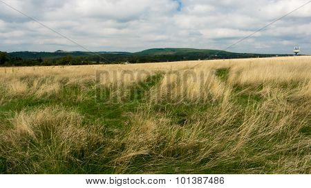 Landscape of hills and meadows with outdoor water tank