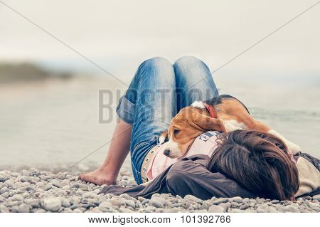 Little Beagle Puppy Lying On His Owner Chest At The Sea Side