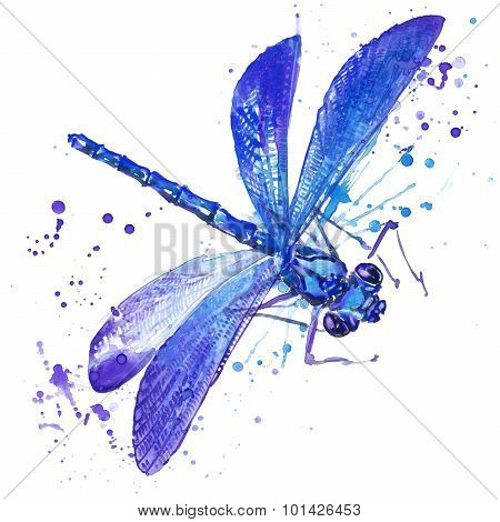 dragonfly insect T-shirt graphics. dragonfly  illustration with splash watercolor textured backgroun