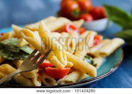 Penne pasta with tomato and basil Close up view