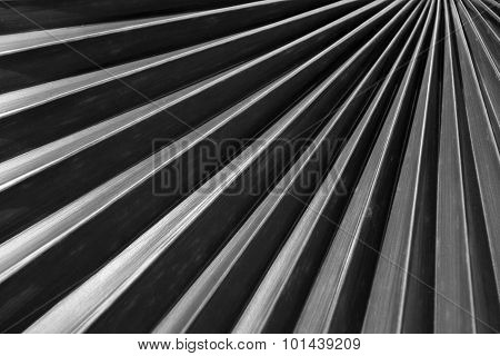 Abstract Palm Tree Leaf