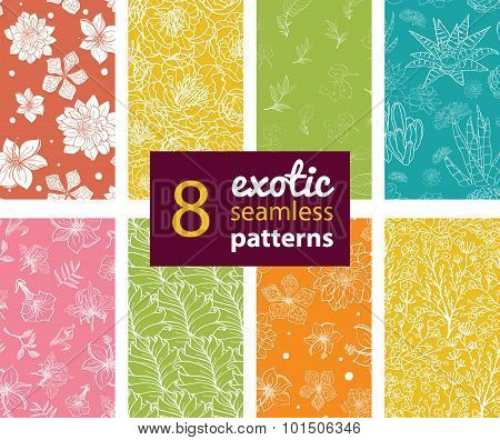 Vector Exotic Flowers Eight Set Seamless Patterns. Succulent Cactus. Hawaiian Hibiscus