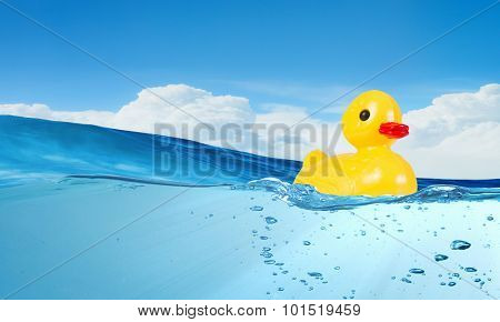 Yellow rubber duck toy floating in water