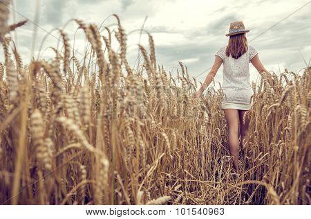corn field walking sensual female from the back