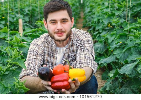 Young handsome guy is working in a greenhouse.