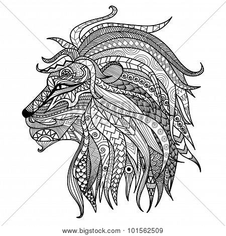Lion Coloring Book