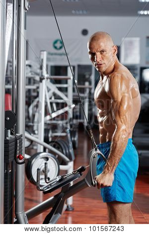 Ripped athlete bodybuilder doing a triceps workout at a cable machine poster