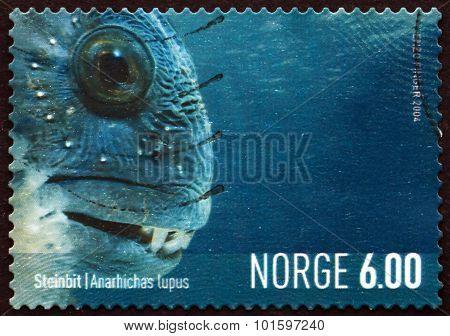 Postage Stamp Norway 2004 Atlantic Wolffish, Marine Life