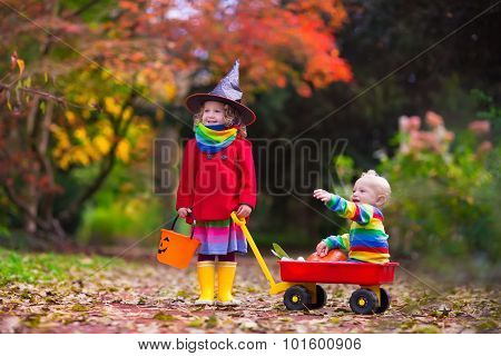 Little girl in witch costume and baby boy in wheel barrow holding a pumpkin playing in autumn park. Kids at Halloween trick or treat. Toddler with jack-o-lantern. Children with candy bucket in forest. poster