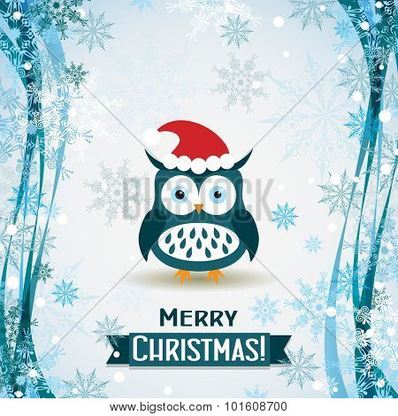 Template Christmas greeting card with a owl, vector illustration
