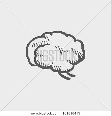 Brain sketch icon for web, mobile and infographics. Hand drawn vector dark grey icon isolated on light grey background.
