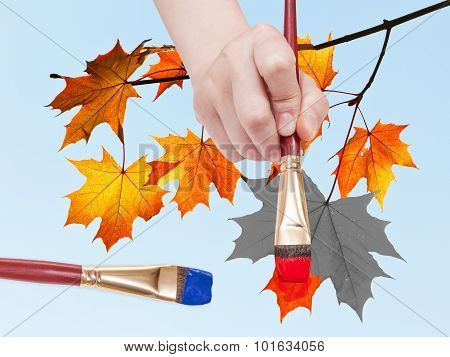 nature concept - hand with paintbrush paints maple leaves in red colour on blue sky background in autumn poster