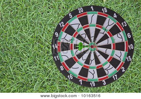 Dart Board On Green Grass Background