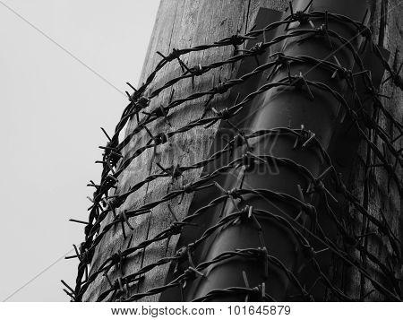 barbed wire around a telegraph pole dark moody dangerous