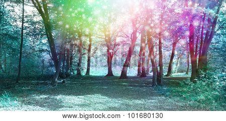 Magical Spiritual Woodland Energy Background