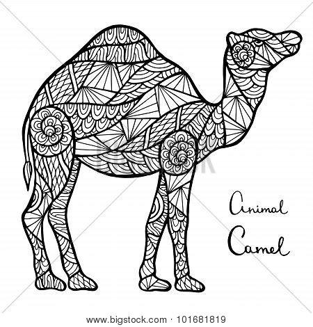 Stylized Vector Camel, Zentangle Isolated On White Background.