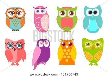 Set of cartoon owls. Vector illustration of cartoon owls in pastel and bright colors