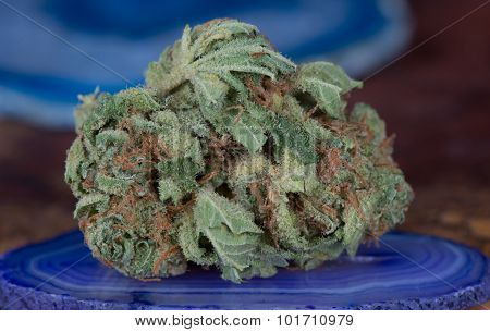 Papaya Medical Marijuana