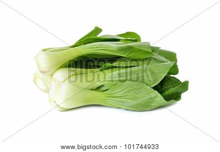 Fresh Baby Bok Choy (chinese Cabbage) On Leaves