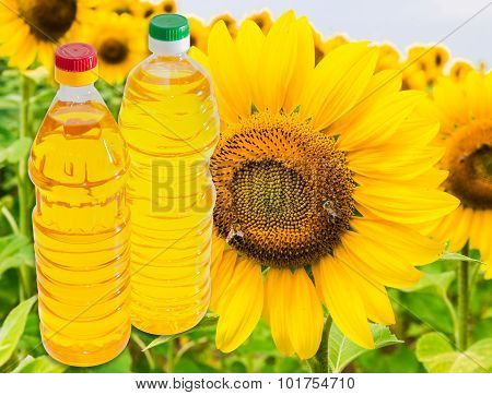 Two Bottles Of Sunflower Oil On Background Of A Sunflower