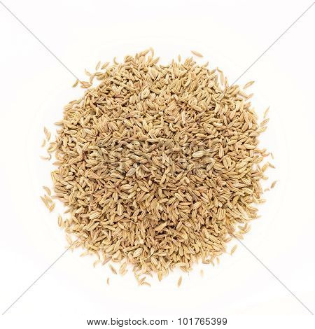 Top view of Organic Fennel seed.