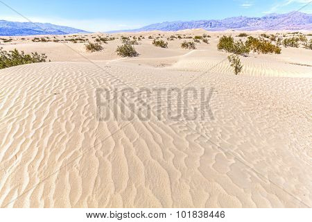 Sand Dunes In Death Valley National Park, California, Usa.