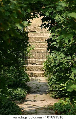 Steps leading up from paved path in garden
