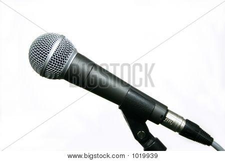Popular Microphone Profile
