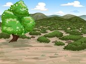 Illustration Featuring a Wide Expanse of Mediterranean Shrubland poster